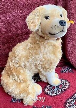 14 Steiff Mohair Golden Retriever Sitting 031760 -2003 Mint Shape HTF -MUST SEE