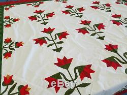 Hand Applique Carolina Lily QUILT TOP Queen, Traditional Must See Design
