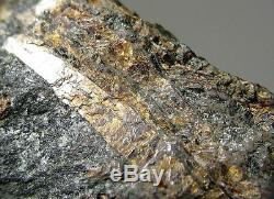 Many Old Labels Lamprophyllite from Kola Peninsula, Russia Must See Rare