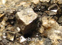 Old English Galena with Quartz and Fluorite Cool Label Must See! Northumberland