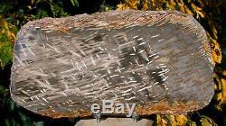 SiS MUST SEE 9 RIP CUT Burmese Petrified Palm Wood Fossil Palmoxylon Myanmar